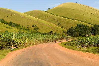Uganda Trip to See Gorillas
