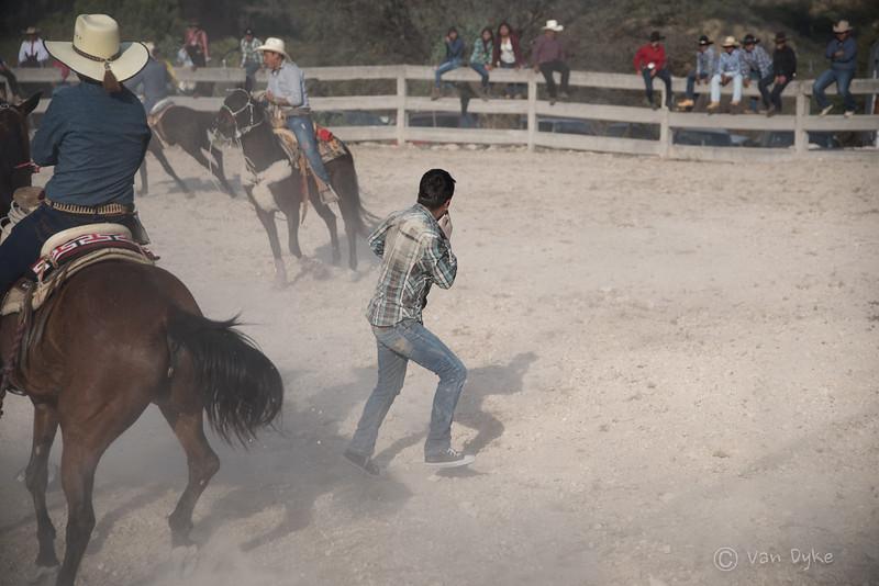 Rodeo (86 of 92).jpg