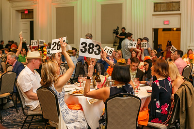 OES Auction 2019