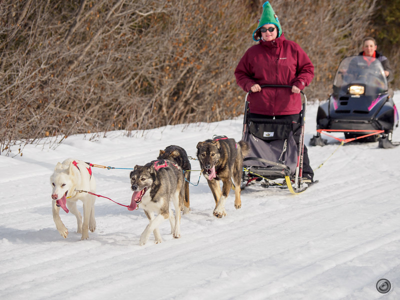 20190325_Blaire_and_Liz_Mushing_44.jpg
