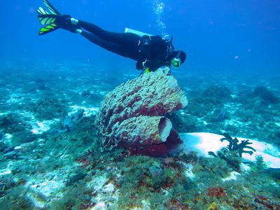 Underwater 2013