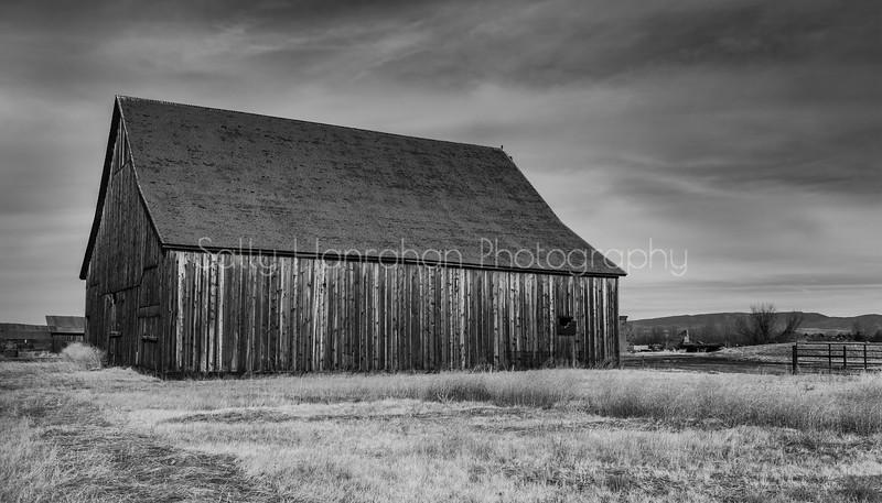 Dangberg Ranch 1870 ~ Minden Nevada