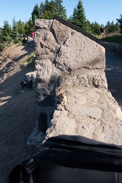 Oregon-24.jpg