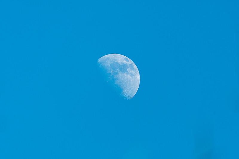 2-3-20 day moon.jpg