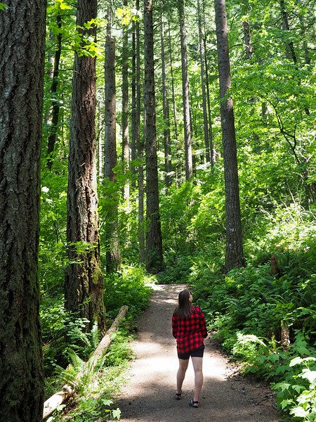 Hiking in the Oregon forest