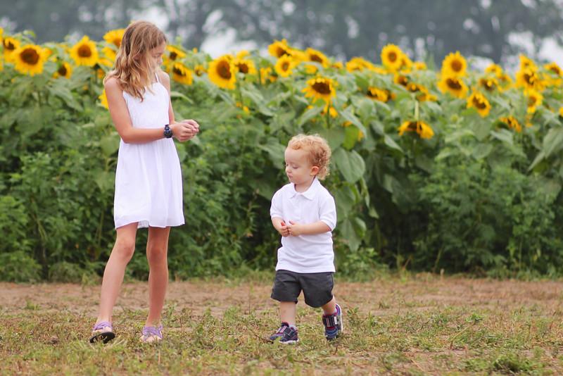 FamilySunflowers_ 100.jpg