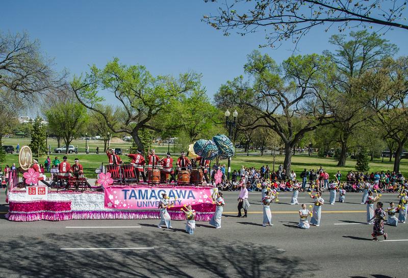 The 2016 Cherry Blossom Parade-52.jpg