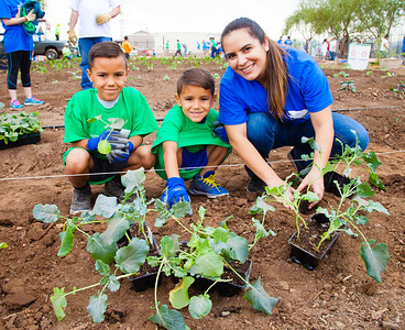Valley Partnership  The Society of St. Vincent de Paul Urban Garden Community Project