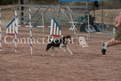 Contact Point AKC Agility Trial - 2/15/14