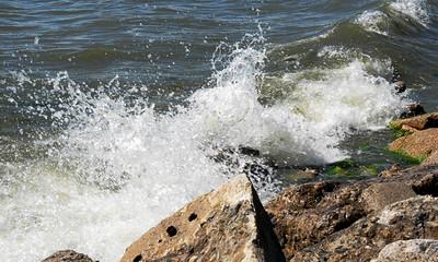 Aug 5 Boston T. meet up Beaches
