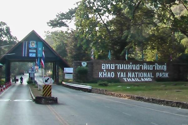 Khao Yai National Park - Bats, Bears and More (November 24-25, 2004)