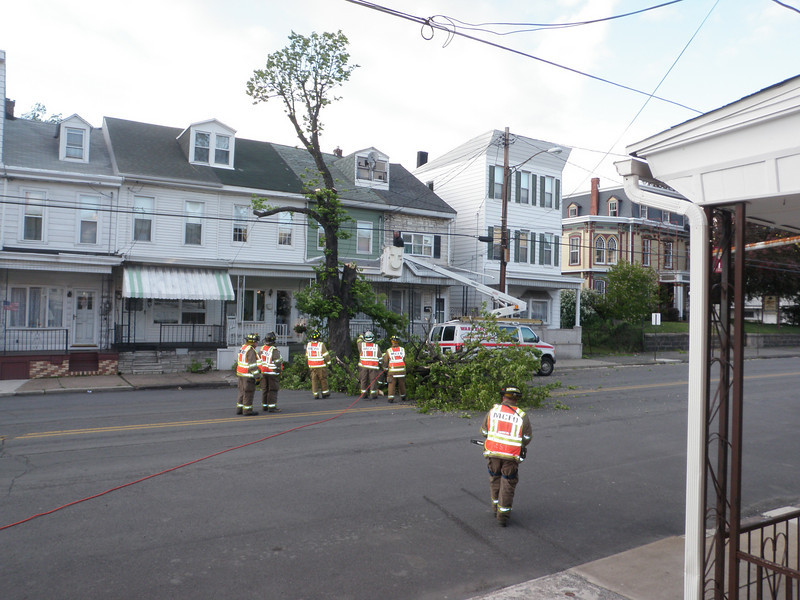 mahanoy city tree incident 5-8-2010 035.JPG