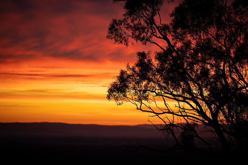 Killawarra Sunrise