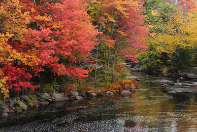 New Hampshire 2015