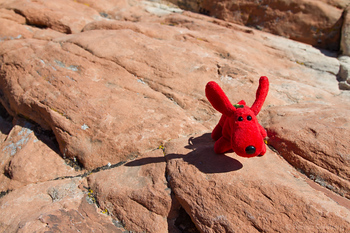 Rover standing on a red rock
