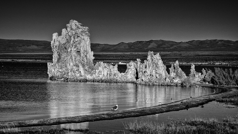 Mono lake South Tufa 2BW.jpg