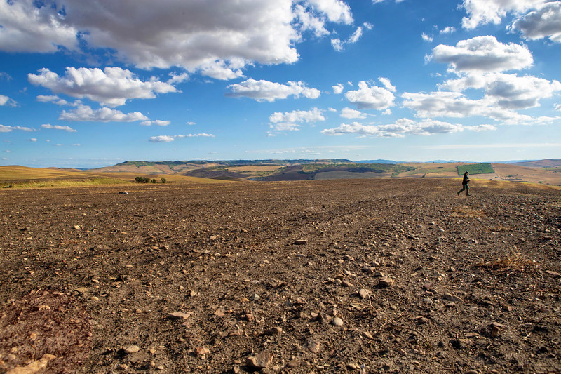 An archaeologist walks across the Vagnari cemetery before trenches are excavated. When not being researched, the site continues to be a working wheat farm.