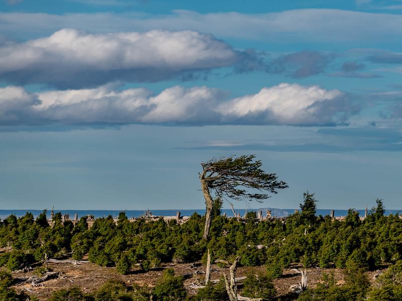 Patagonia_D850_1811_3497_1080p-wm.jpg
