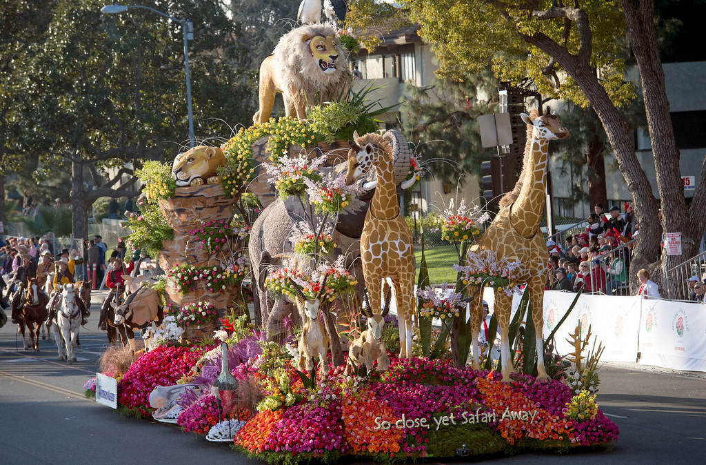 ". Western Asset Management Co. ""So Close, Yet Safari Away\"" float during 2014 Rose Parade in Pasadena, Calif. on January 1, 2014. This float won the Past Presidents\' award for most creative design and use of both floral and non-floral materials. (Staff photo by Leo Jarzomb/ Pasadena Star-News)"