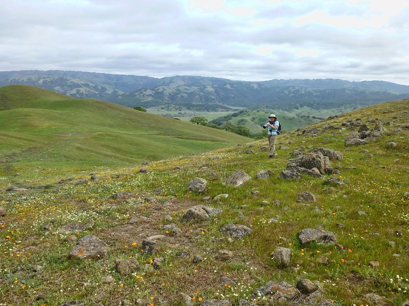Coyote Ridge Hike 4-6-2013 07.JPG