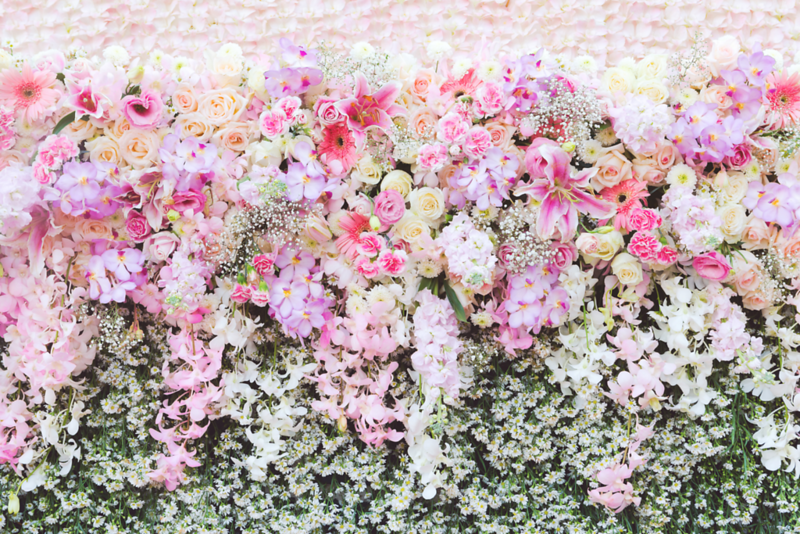 Colorful Rose Wall.png