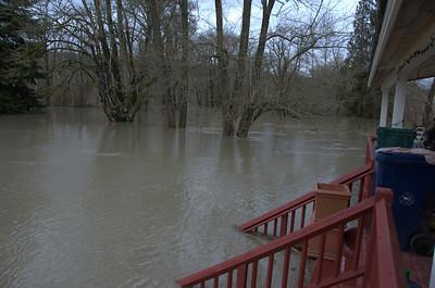 New Record Snoqualmie Flood - January 2009