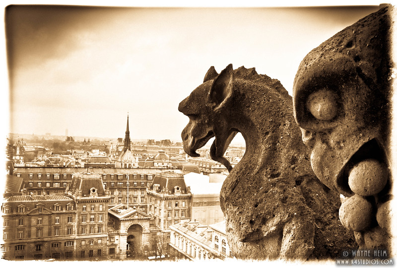 Notre Dame Gargoyle  5  Photography by Wayne Heim