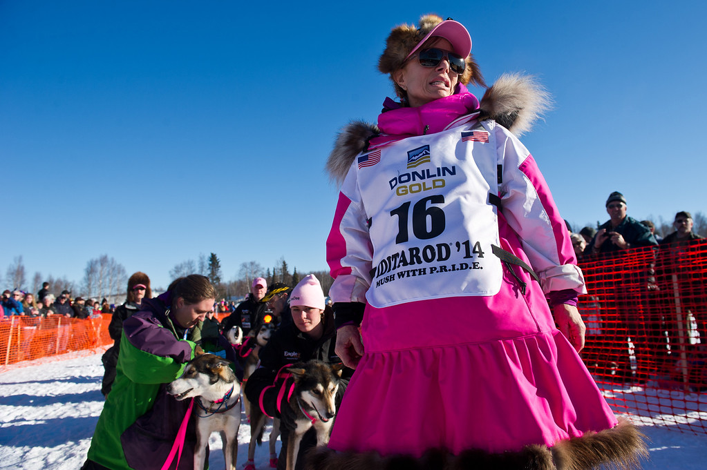 . Veteran musher DeeDee Jonrowe leads her team to the starting line before the start of the Iditarod Trail Sled Dog Race on Willow Lake, Sunday, March 2, 2014, in Willow, Alaska. The race will take mushers nearly a thousand miles to the finish line in Nome, on Alaska\'s western coast. (AP Photo/Anchorage Daily News, Marc Lester)