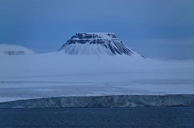 Pure Arctic