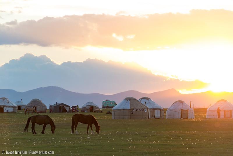 Song Kol Horse Trek-6107010.jpg