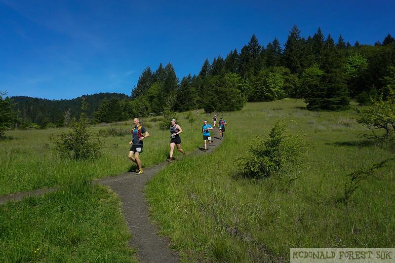 20190504.gw.mac forest 50K (54 of 123).jpg