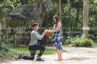 Cole and Sydney Proposal | Sugar Mill