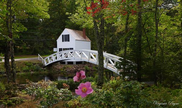 Somesville Bridge and Gardens - September 8, 2017