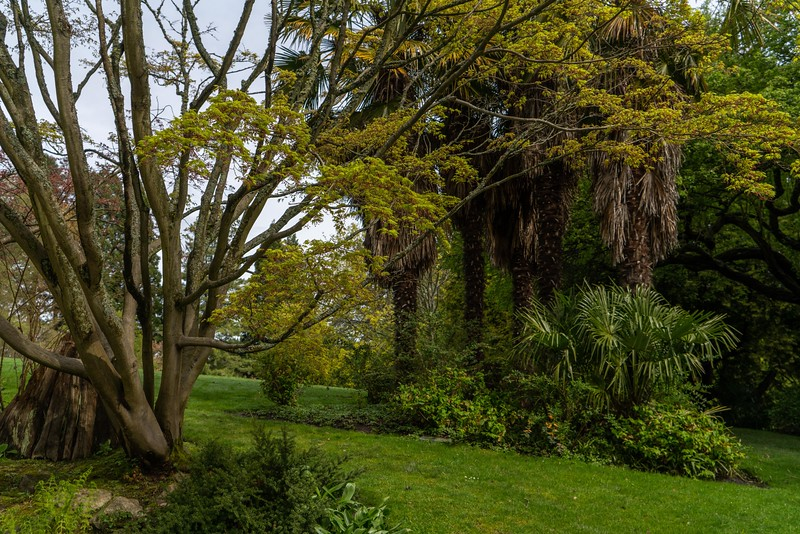 Pratt_Seattle Spring.jpg