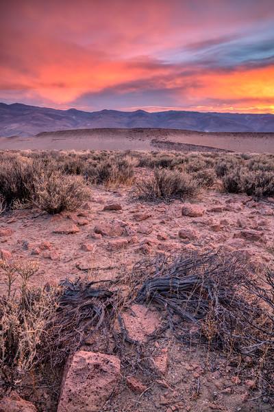 Eastern Sierra Fall 2018-2.jpg