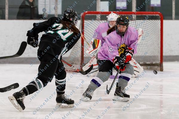 King's College Women's Ice Hockey vs Stevenson 12/01/2018