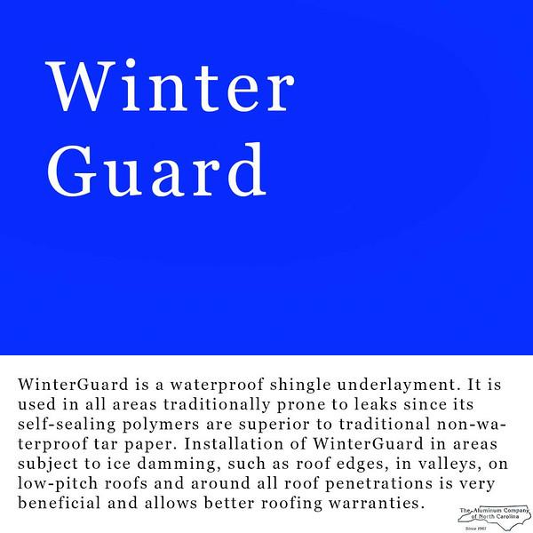 winterguardLr.jpg