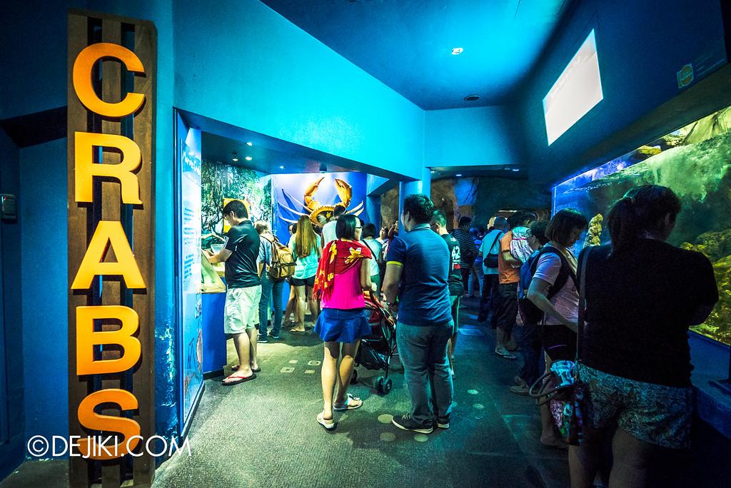 Underwater World Singapore - CRABS