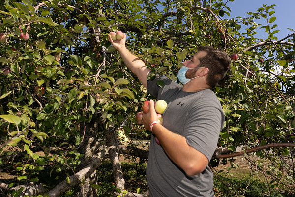 2020 Alumni apple picking 10/4/2020