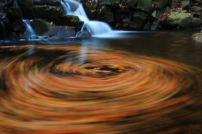 Whirlpool of Fall — Őszi örvény