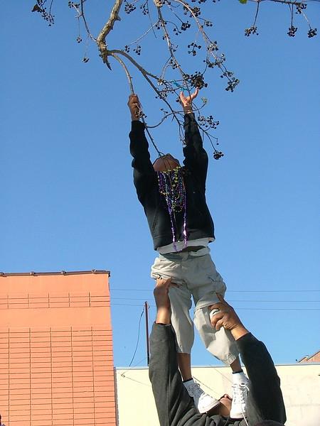 2007 Mardi Gras 156.jpg