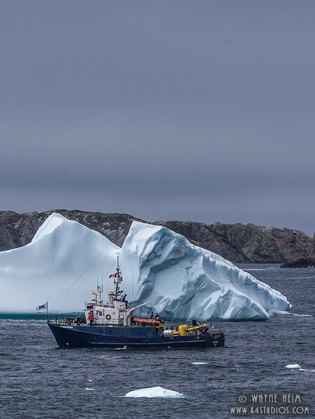 Iceberg 69a    Photography by Wayne Heim