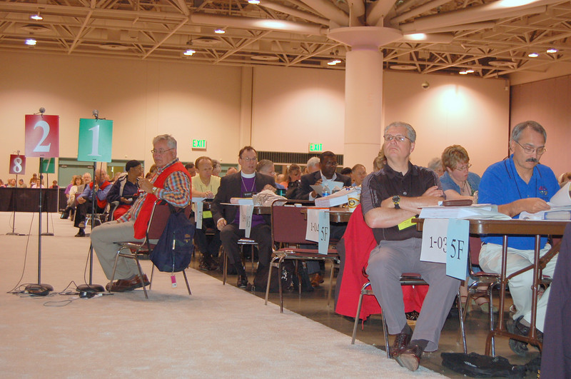 Voting members at plenary session two.