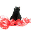 Black cat on white background with red ribbon