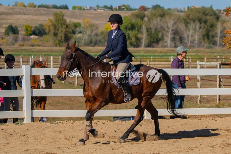 IEA horse show - Just a Little Farm - October 13, 2018