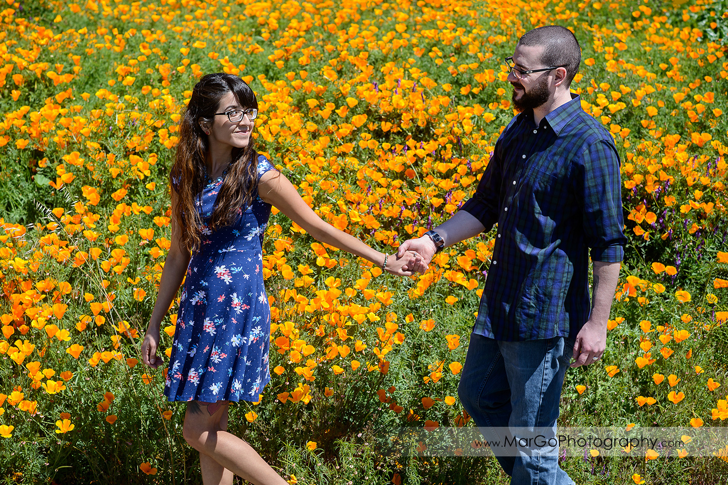 man in blue shirt and woman in blue dress holding hands and walking among orange poppies during engagement session at Sunol Regional Wilderness