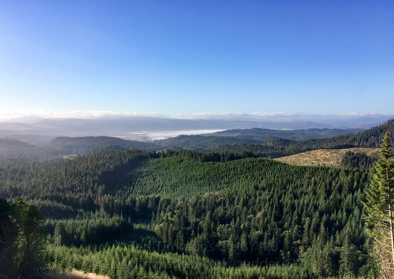 Camas Valley from the landslide section. Look at that pool of fog.
