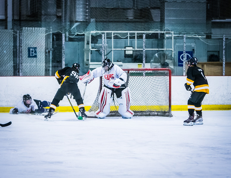 Bruins2-166.jpg