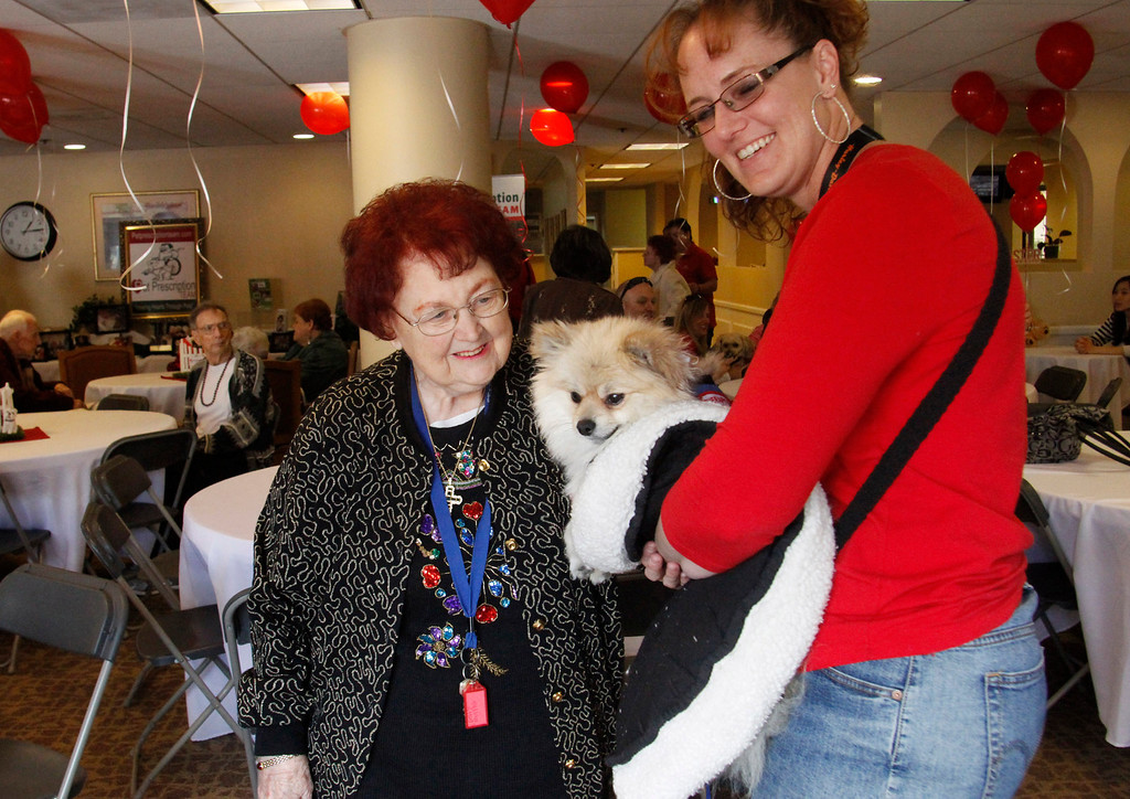 """. Becky Wismer, right, introduces \""""Black Beard\"""" to Betty Murphy, 81, during the Pet Prescription\'s 10th Anniversary Open House, at Whitten Heights in La Habra, Saturday, March 9, 2013. The organization uses therapy dogs to heal emotional and medical problems, and to hang out with seniors at retirement homes. (Correspondent Photo by James Carbone/SWCITY)"""