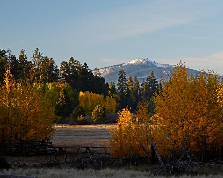 Glaze Meadow Proper Fence Fall_DSC7831e.jpg